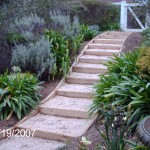 .... steps to the garden...